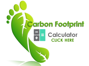 carbon-footprint-web